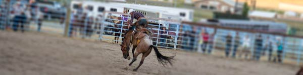 Tobacco Valley Rodeo