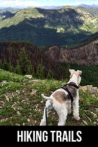 Hiking in NW Montana